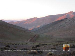 Ruta Los Loros, Chile 2015-36